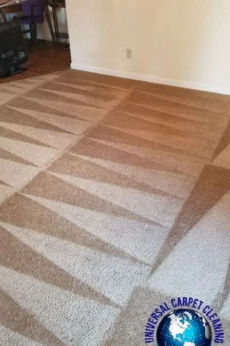 HOW TO GET WAX OUT OF CARPET