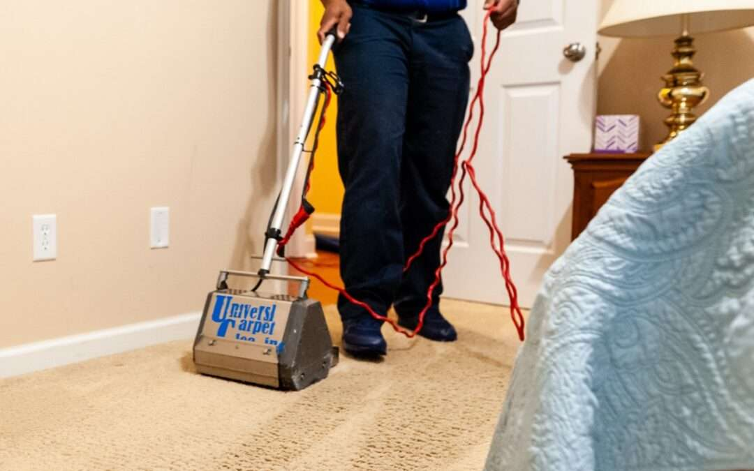 How to Choose a Carpet Cleaning Service